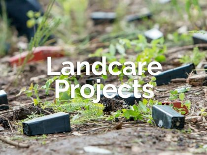 Landcare Projects